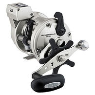 Daiwa Accudepth Plus-B Line Counter Saltwater Reel