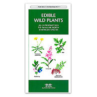 Edible Wild Plants by James Kavanagh