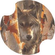 Thirstystone Birch Wolf Carster Coaster Set, 2-Piece