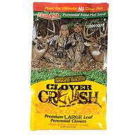 Evolved Clover Crush Food Plot Seed
