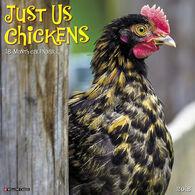 Willow Creek Press Just Us Chickens 2018 Wall Calendar