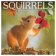 Willow Creek Press Squirrels 2021 Wall Calendar