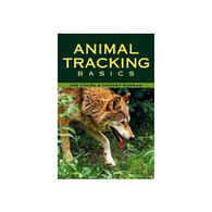 Animal Tracking Basics by Jon Young & Tiffany Morgan