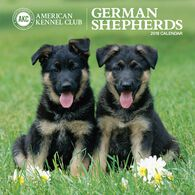 AKC German Shepherds 2018 Wall Calendar by Zebra Publishing