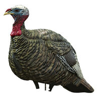 Avian-X LCD Jake Quarter Strut Turkey Decoy