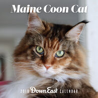 Maine Coon Cat: 2019 Down East Wall Calendar by Editors of Down East