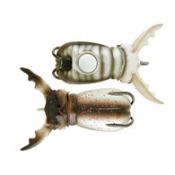 Molix Supernato Beetle Baby Lure