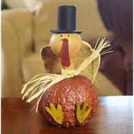 Meadowbrooke Gourds Theodore Medium Turkey Gourd