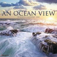 Willow Creek Press An Ocean View 2020 Wall Calendar