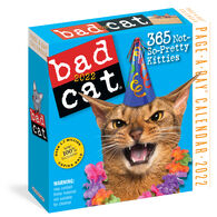 Bad Cat 2022 Page-A-Day Calendar by Workman Publishing