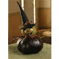 Meadowbrooke Gourds Fiona Medium Witch