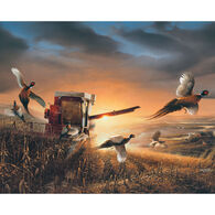 White Mountain Jigsaw Puzzle - Evening Surprise